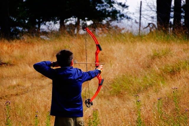 wild boar bow hunting