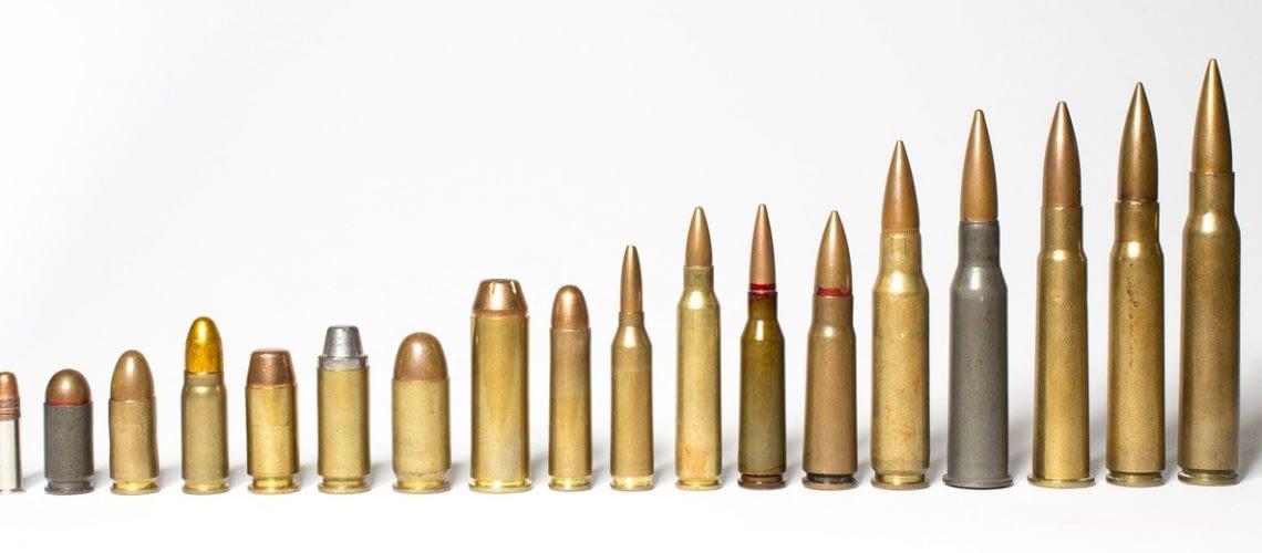 hog hunting rifles