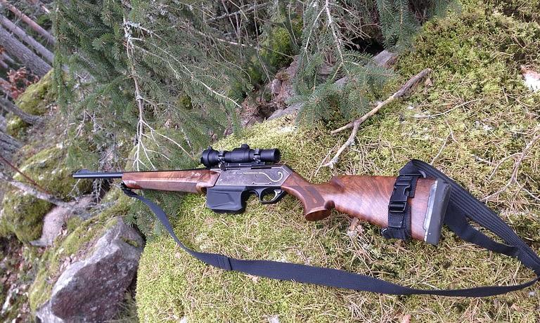 guns for hogs hunting